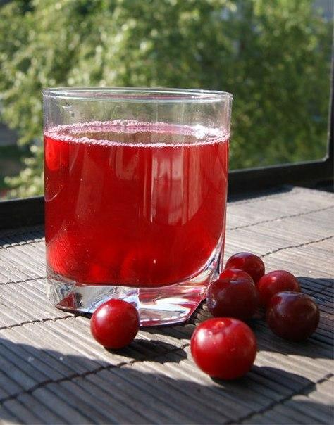 ягода клоповка рецепты заготовок на зиму-хв10