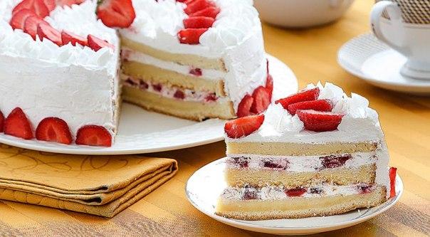 Рецепты бисквитный торт