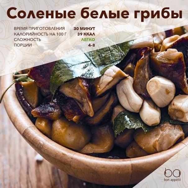 Солёные грибы рецепты приготовления